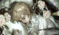 Lolita-Nocturne
