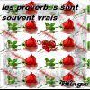Profil de x-Lesproverbesreels08-x