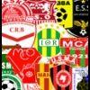 Profil de algerien-pixule