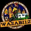 Profil de wasabi12