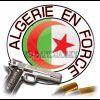 Profil de renaissance-algerienne