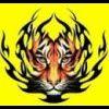 fatal-tigers-06