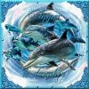 Profil de aucoeurdesdauphins