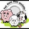 Profil de stop-au-massacre-animal