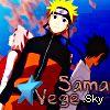 Profil de vege-sama--v2