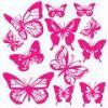 Profil de missynaellia974